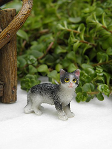 CHSGJY Miniature Dollhouse Fairy Garden Accessories ~ Small Standing Black & White Cat