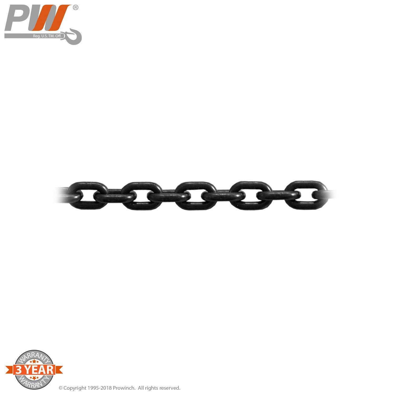 1//2 Ton Electric Chain Hoist Power Trolley 20 ft G100 Chain M4//H3 208~240//380//460V
