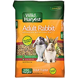 Wild Harvest Advanced Nutrition Diet for Adult Rabbits, 8 lbs