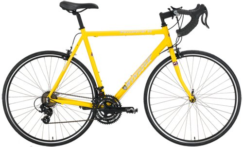 Windsor Wellington 2.0 Aluminum 21 Speed Shimano Equipped Road Bike (Yellow, 53cm) ()
