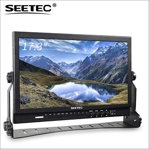 SEETEC P173-9HSD 17.3
