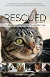 img - for Rescued Volume 2: The Healing Stories of 12 Cats, Through Their Eyes book / textbook / text book