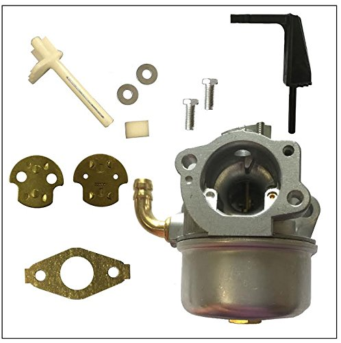 Amazon.com : New Replacement Carburetor and Gasket for Briggs ...