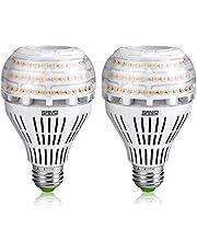 SANSI Ledlamp E27 27 W spaarlamp (vervangt 250 W), 4000 lm ultraheldere A21 LED-lamp voor keuken, werkplaats, kantoor, garage, binnenplaats, niet dimbaar, verpakking van 2 stuks