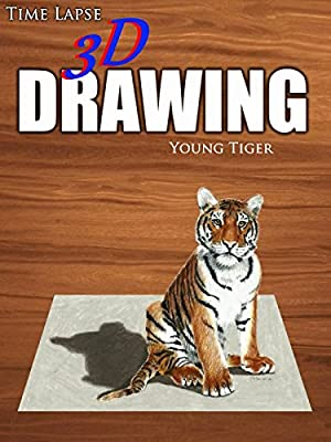 Clip: Time Lapse 3D Drawing: Young Tiger
