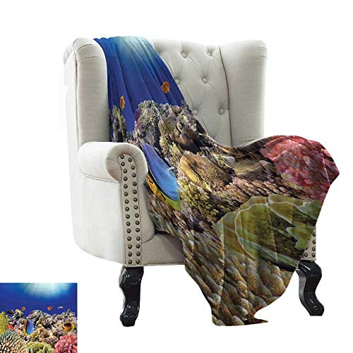 Reversible Blanket Wild Sea Life Colorful Ancient Coral Reefs Exotic Fishes Bali Indonesia Traveling,Hiking,Camping,Full Queen,TV,Cabin 50
