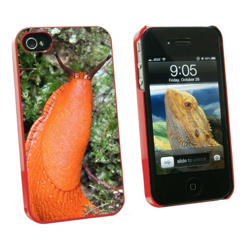 graphics-and-more-large-orange-slug-snail-mollusk-snap-on-hard-protective-case-for-apple-iphone-4-4s