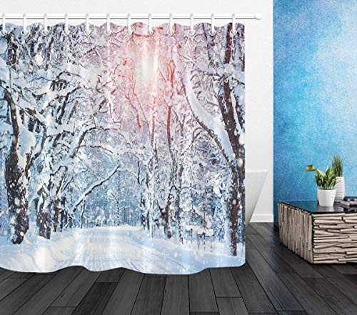 LB Winter Forest Shower Curtain Snow Covered Trees Pathway in Sunshine Winter Season Scenic Shower Curtain Set with 10 Hooks,Waterproof Fabric 60x72 Inch (Snow In Forest)