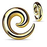 BodyJ4You 00 Gauge Curved Spiral Tapers Goldtone Stainless Steel (10mm) - 2 Pieces