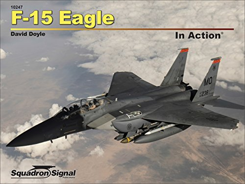 F-15 Eagle in Action -