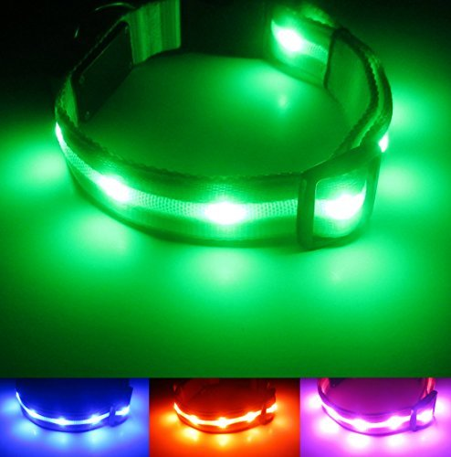 Blazin' Safety LED Dog Collar USB Rechargeable with Waterproof Flashing Light Green (S) by Blazin' Bison