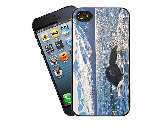 Baleine à bosse en Islande-Coque pour iPhone-La-Coque pour Apple iPhone 5/5s By Eclipse idées cadeaux