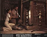 "The Private: Awakening 1980 Authentic 8"" x"