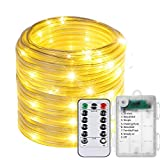 Fairy String Lights,100 LED Rope Lights Battery Operated Fairy Lights with Remote Timer Control 8 Modes Twinkle Starry Waterproof Lights for Christmas Garden Party Wedding Bedroom Decor(Warm White)
