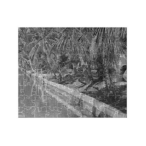 (Media Storehouse 252 Piece Puzzle of Canal Lined with Palm Trees)