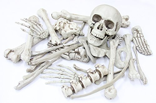 Scary Halloween Ideas For Haunted House (Haunted House Decoration Real Looking Halloween Prop - Detailed Looking Creepy 28 PCS Bag of Skeleton Bones & Skull)