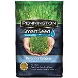 Pennington 100086853 Smart Seed Perennial Rye Blend Premium Grass Seed Mixture, 3-Pound