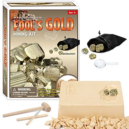 XXTOYS Fool's Gold Dig Excavation Kit for Kids Pyrite Nuggets Stone Gold Bar Science Toys Boys Girls 6+ Years Old
