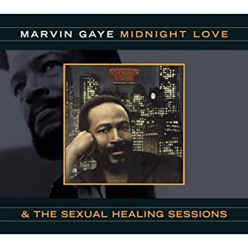 Marvin gaye sexualing healing long version