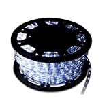 Walcut Flexible Crystal Clear PVC Tubing LED Rope Light Indoor/Outdoor Boat Decorative Party Christmas Holiday Business Restaurant Light Kit, 110V, Cool White