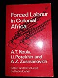 Forced Labour in Colonial Africa, Nzula, A. and Potehkin, I. I., 0905762312