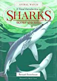 img - for A Visual Introduction to Sharks: A Visual Introduction to Sharks, Skates, and Rays (Animal Watch) book / textbook / text book