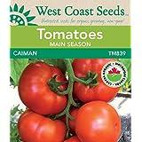 Tomato Seeds - Caiman F1 Certified Organic