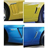 Eckler's Premier Quality Products 25263212 Corvette Paint Protector Set Cleartastic Invisible Z06/Grand Sport