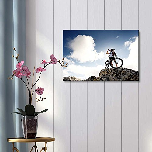 Cyclist Drinks Water on Top of a Mountain with Bike on a Sunny Day Wall Decor ation