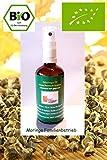 50 ml Bio Moringa Öl / Behen Öl kaltgepresst Premium Qualität deutscher Bio Anbau in Ghana im Glas