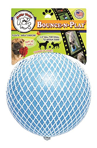 Jolly Pets Bounce N Play 4 5 Inch Blueberry