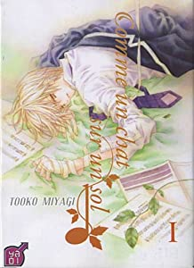 Comme un chat sur un sol, Tome 1 (French Edition) Tooko Miyagi