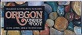 Oregon Under Foot: Agate, Jasper, Opal & Related Gems (An OMSI Press guide)