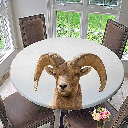 PINAFORE HOME Simple Modern Round Table Cloth Head Shot Horn Sheep ram Look at Photographer for Daily use, Wedding, Restaurant 59