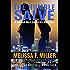 The Humble Salve: A Sasha McCandless Novella Book 10.5 (Sasha McCandless Legal Thriller)
