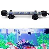 GreenSun LED Lighting 2W Submersible LED Aquarium Light, 12V 5050SMD Underwater Strip Light for Fish Tank, White with Blue LEDs