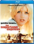 Cover Image for 'The Sugarland Express'