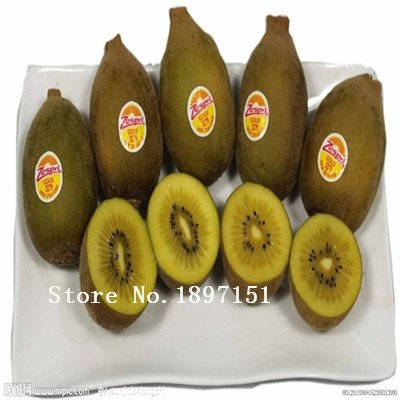 100 rare bonsai kiwi seeds send seeds for gift fruit seeds for DIY home garden planting new year only $1.11