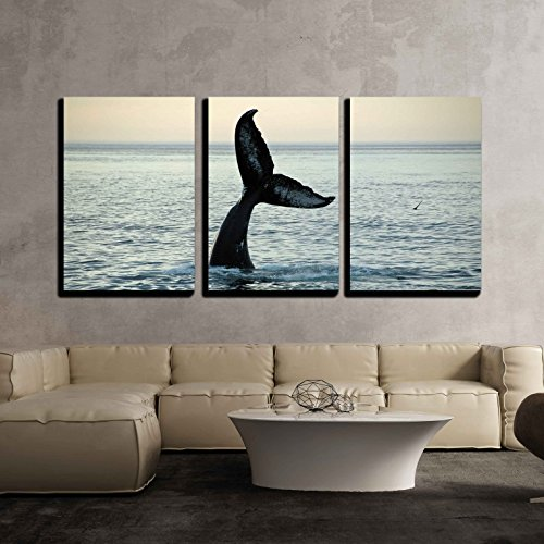 Cape Cod Canvas (wall26 - 3 Piece Canvas Wall Art - Fin of a Humpback Whale - Modern Home Decor Stretched and Framed Ready to Hang - 24