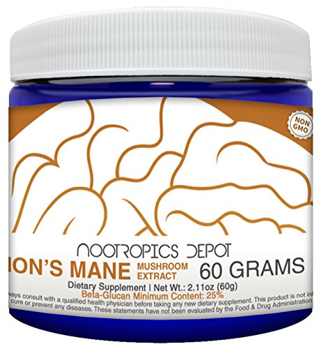 Cheap Lions Mane Mushroom Powder | 60 Grams | Hericium erinaceus | Organic Whole Fruiting Body Mushroom Extract | Natural Nootropic Supplement | Neuroprotective + Boosts Mood