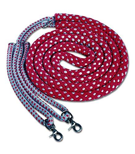 Longierhilfe rot/grau | Longiertrainingssystem | Longierzügel Longing System Gr. Pony