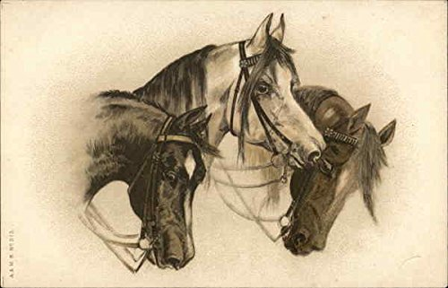 Trio of Horses Original Vintage ()