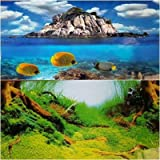 Karen Low NEW!! 19 Inch Height Double Sided Aquarium Background Clear Ocean Tropical Fish Decorations (36''(L) x 19''(H))