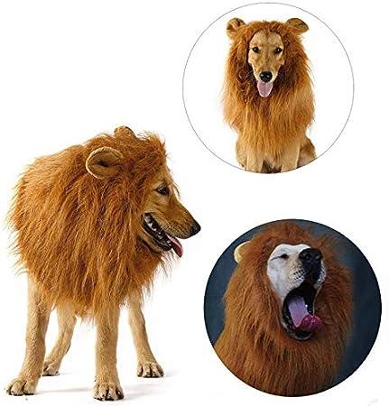 CHUANG TIANG Disfraces De Melena De León Peluca De Perro, Pelo De León para Perros Grandes Toque Suave Cómodo Ropa para Mascotas Cosplay,Blanco: Amazon.es: Hogar