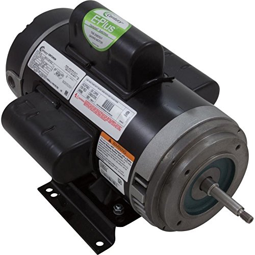 A.O. Smith B116 56Y C-Face 4HP 208-230V Pool or Spa Pump Motor by A. O. Smith