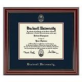 Bucknell Fidelitas Frame offers