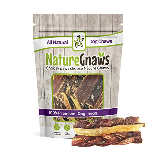 Nature Gnaws Beef Combo Pack (6 Count) - (2) Braided Bully Sticks, (2) Tendon Chews & (2) Jerky Springs for Dogs