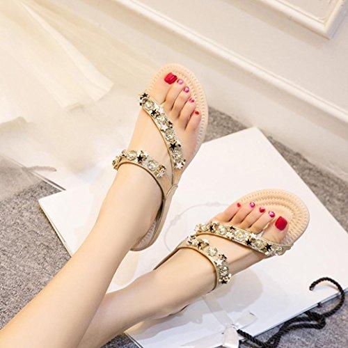 Lolittas Diamante Flat Flip Flops for Women Ladies, Wedding Bridal Glitter Bling Jewelled Star Slim Personalised Toepost Embellished Thong Sandals Shoes Size 2-7 Silver