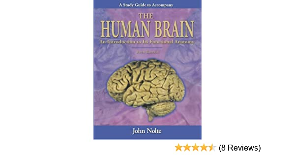 Study guide to accompany the human brain 9780323013215 medicine study guide to accompany the human brain 9780323013215 medicine health science books amazon ccuart Image collections