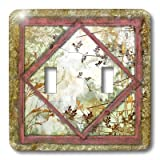 3dRose LLC lsp_36524_2 Shabby Vines And Frames, Double Toggle Switch